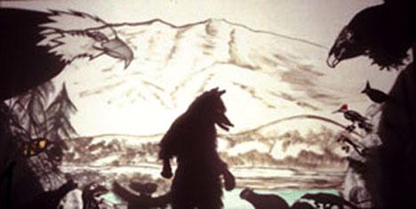 Coyote's Journey